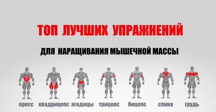 Топ лучших упражнений для набора мышечной массы